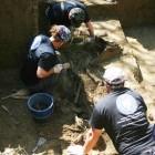 Investigaţii Nepos, 2009